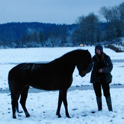 Sola and Poetica in the snow